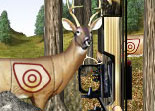 Bow Hunter Target Challenge Hunting