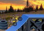 Hillblazer FMX Dirt Bike