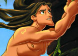 Hidden Numbers Tarzan