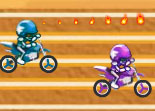 Pro Motorcycle Racer